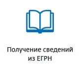 Получение выписки ЕГРН